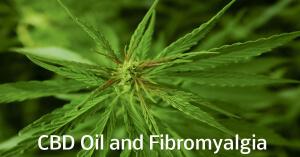 cbd-oil-and-fibromyalgia